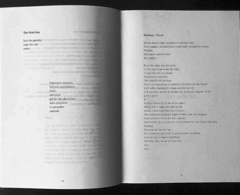 Alphan Vardarlı Şiir Performansı